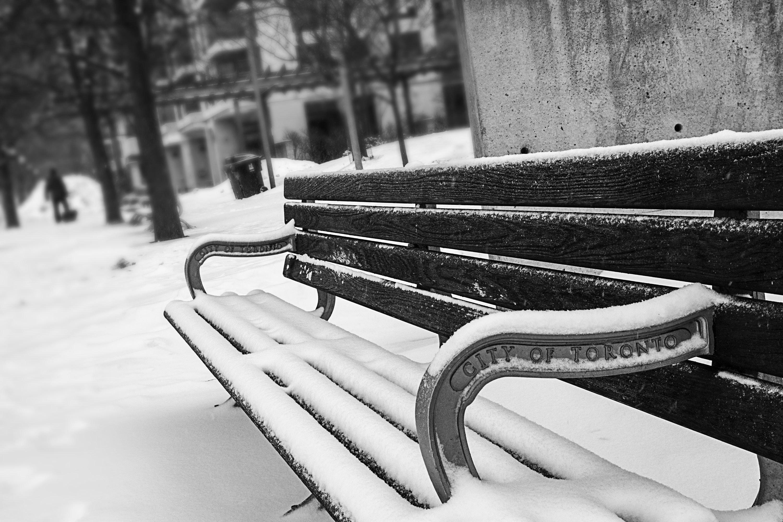 A Winter's Verse (#13)